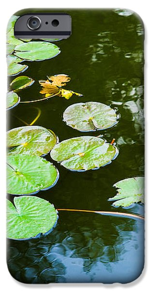 Old Pond - Featured 3 iPhone Case by Alexander Senin
