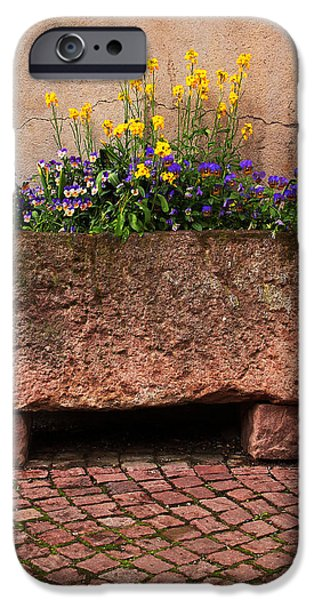 Old Stone Trough and Flowers in Alsace France iPhone Case by Greg Matchick