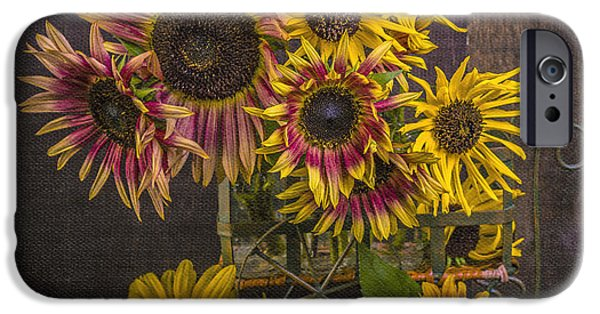 Van Gogh iPhone Cases - Old Sunflowers iPhone Case by Edward Fielding