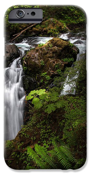 Rainforest iPhone Cases - Olympic National Park iPhone Case by Larry Marshall