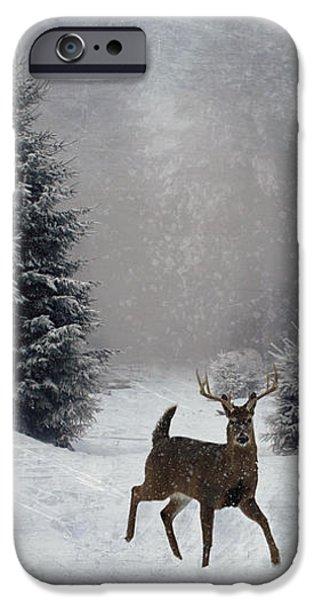 On a snowy evening iPhone Case by Lianne Schneider