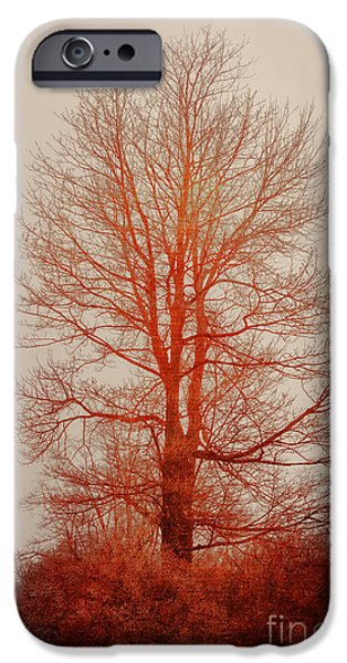 On Fire In The Fog iPhone Case by Lois Bryan