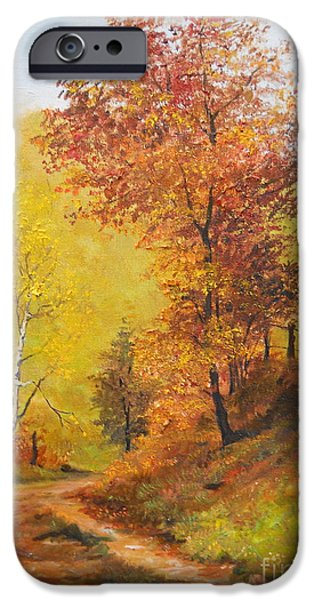 Autumn iPhone Cases - On my Way Home iPhone Case by Sorin Apostolescu