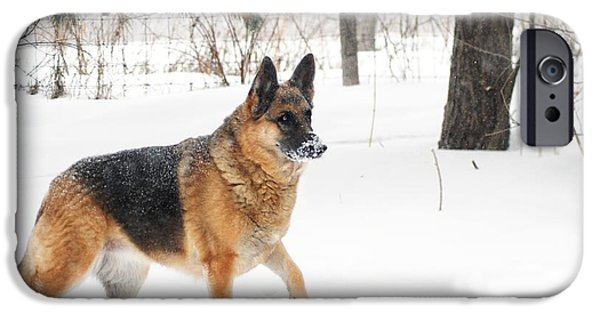 Dog In Landscape iPhone Cases - On Patrol iPhone Case by Michele Thielke