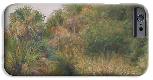 Exploring Paintings iPhone Cases - On Pellicer Creek iPhone Case by Patty Weeks