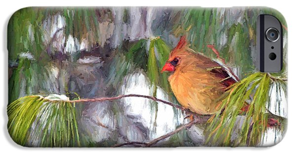 Cardinal iPhone Cases - On Snowy Branches iPhone Case by Kerri Farley
