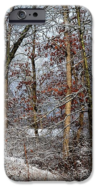 Snowy Day iPhone Cases - On Such A Winters Day iPhone Case by Deena Stoddard