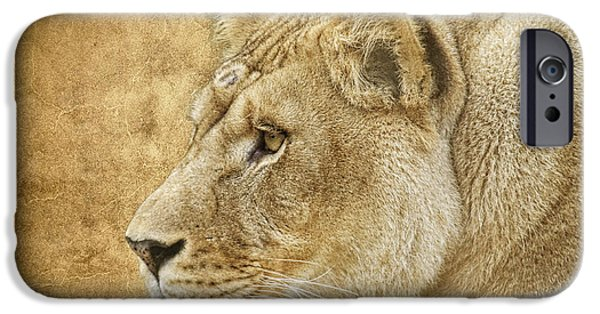 Animals Photographs iPhone Cases - On Target iPhone Case by Steve McKinzie