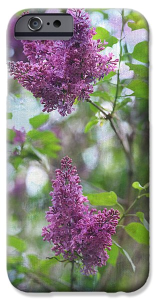 Lilacs iPhone Cases - On The Bush iPhone Case by Rebecca Cozart