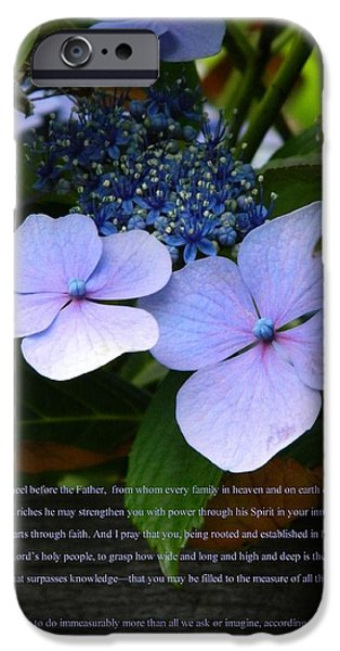 3.14 iPhone Cases - On the Fence Hydrangea Eph 3 14 21 iPhone Case by Nicki Bennett