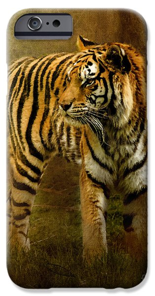 The Tiger Hunt iPhone Cases - On The Hunt iPhone Case by Betty LaRue