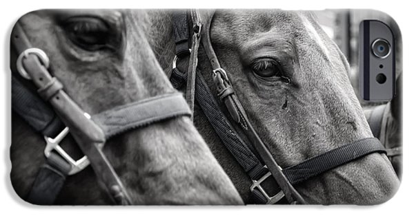 Horse Bit iPhone Cases - On the Job iPhone Case by Joan Carroll