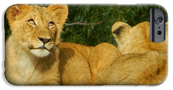 Smithsonian iPhone Cases - On The Lookout 01 iPhone Case by Emmy Marie Vickers
