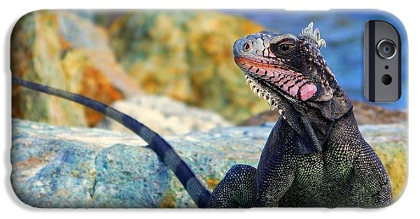 Iguana iPhone Cases - ON the PROWL iPhone Case by Karen Wiles