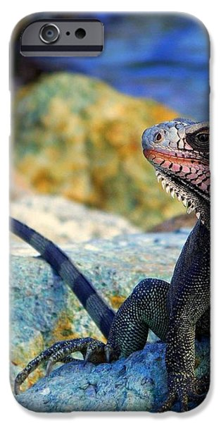 ON the PROWL iPhone Case by KAREN WILES