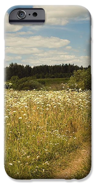 On the Summer Meadow II. Russia iPhone Case by Jenny Rainbow