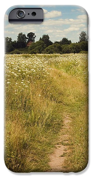 On the Summer Meadow. Russia iPhone Case by Jenny Rainbow