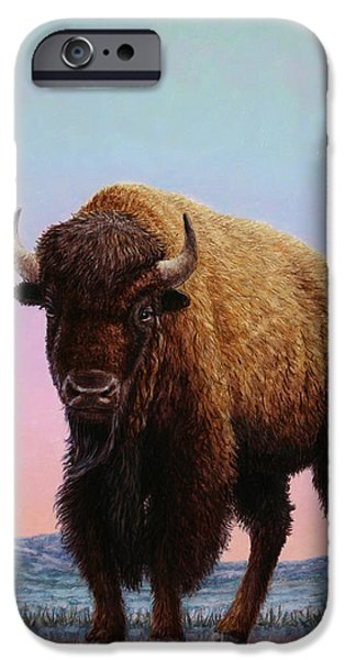 Bison iPhone Cases - On Thin Ice iPhone Case by James W Johnson