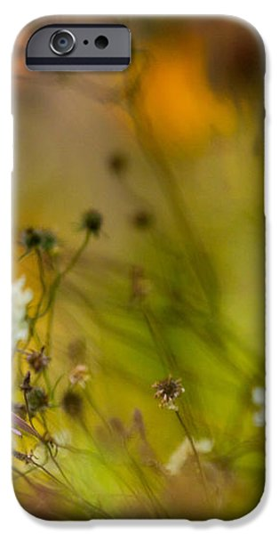 Once Upon a Time There Lived a Flower iPhone Case by Mary Amerman