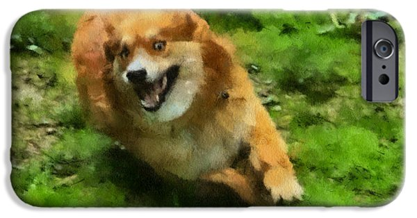 Huskies iPhone Cases - One happy flying dog iPhone Case by Eti Reid