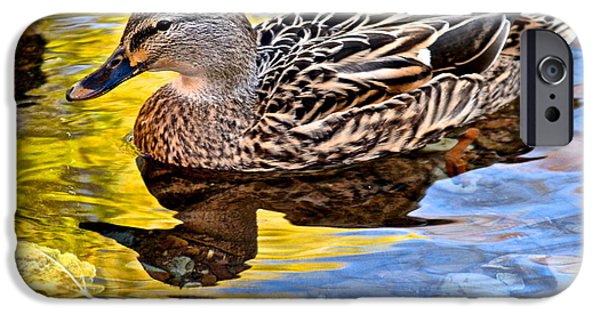 Duchess Photographs iPhone Cases - One Leaf Two Ducks iPhone Case by Frozen in Time Fine Art Photography