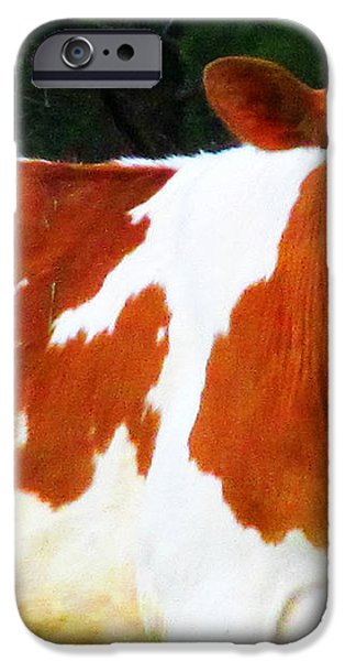 One Lovely Guernsey iPhone Case by Tina M Wenger