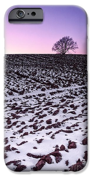 Fresh Snow iPhone Cases - One more tree iPhone Case by John Farnan