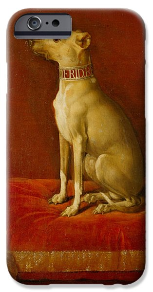 One Paintings iPhone Cases - One of Frederick II Italian greyhounds iPhone Case by German School