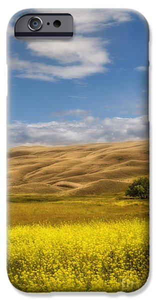 One iPhone Cases - One iPhone Case by Sandi Mikuse