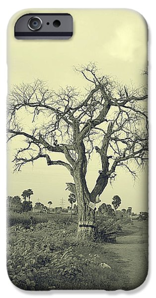 One Pyrography iPhone Cases - One Tree iPhone Case by Girish J