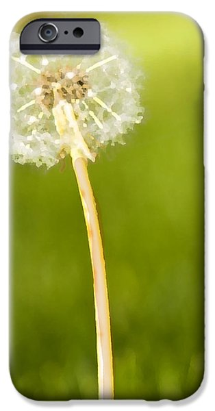One Wish  iPhone Case by Artist and Photographer Laura Wrede