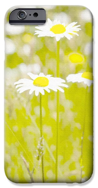 Oopsy Daisy iPhone Case by Artist and Photographer Laura Wrede