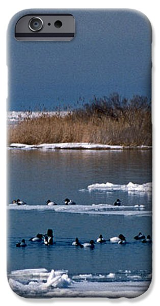 OPEN WATER iPhone Case by Skip Willits