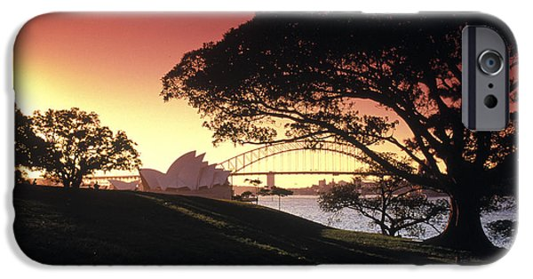 Sunset Framed Prints iPhone Cases - Opera Tree iPhone Case by Sean Davey