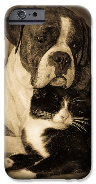 Boxer iPhone Cases - Opposites Attract iPhone Case by DigiArt Diaries by Vicky B Fuller