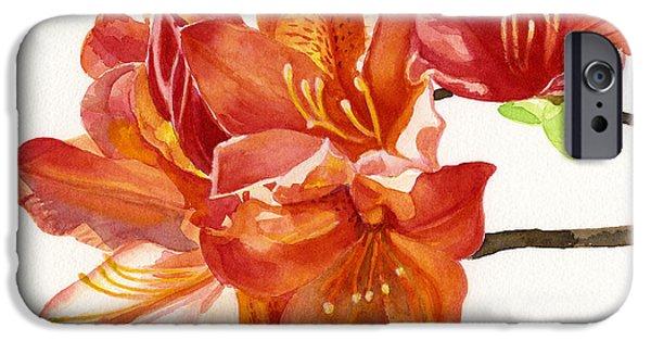 Close Up Floral iPhone Cases - Orange Azalea Square Design iPhone Case by Sharon Freeman