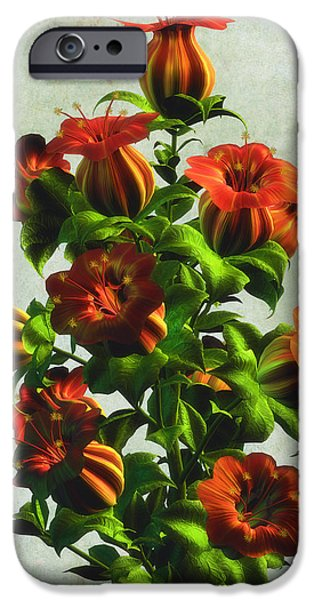 Botanic Illustration iPhone Cases - Orange Bellflowers iPhone Case by Nelieta Mishchenko
