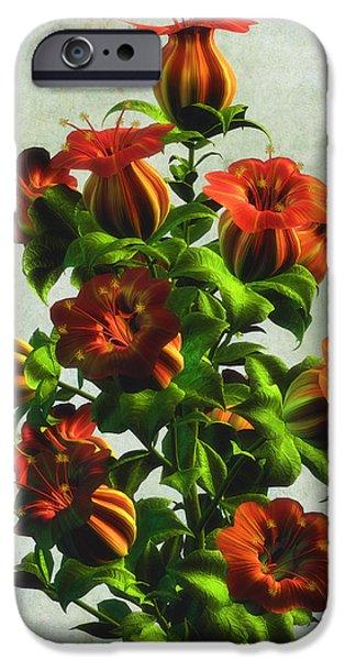 Botanic Illustration iPhone Cases - Orange Bellflowers iPhone Case by Nelieta Mishchenko
