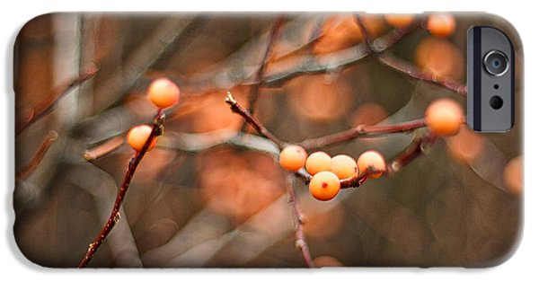 Berry iPhone Cases - Orange Berries iPhone Case by Stuart Litoff