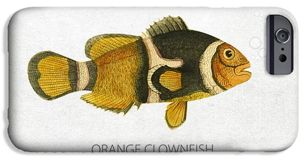 Aquarium Fish iPhone Cases - Orange Clownfish iPhone Case by Aged Pixel