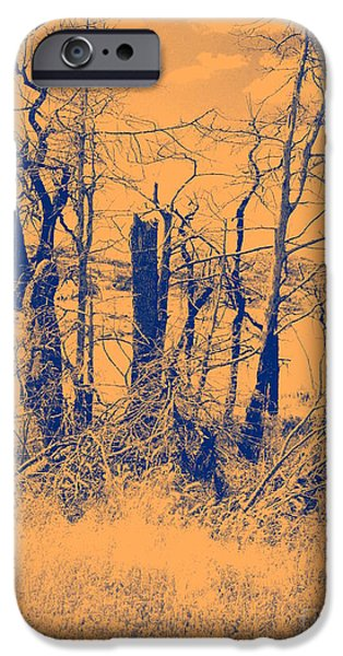 Duo Tone iPhone Cases - Orange Glow iPhone Case by Mickey Harkins