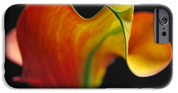 Close Up Floral iPhone Cases - Orange Goddess iPhone Case by Juergen Roth