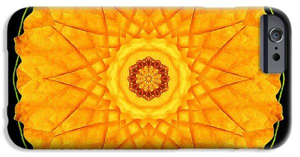 David J Bookbinder iPhone Cases - Orange Nasturtium Flower Mandala iPhone Case by David J Bookbinder