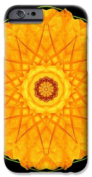 Orange Nasturtium Flower Mandala iPhone Case by David J Bookbinder