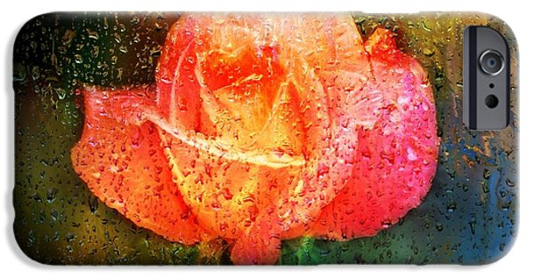 Rainy Day iPhone Cases - Orange Rose and rain drops iPhone Case by Lilia D