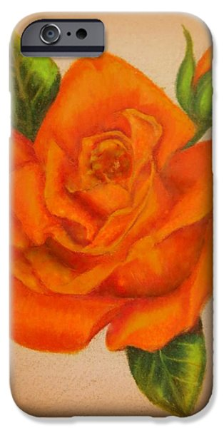 Flora Drawings iPhone Cases - Orange Rose iPhone Case by Zina Stromberg
