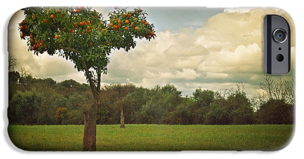 Texture iPhone Cases - Orange-tree Landscape iPhone Case by Carlos Caetano