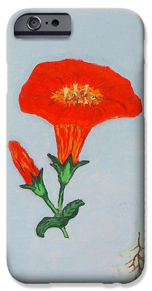 Floral Reliefs iPhone Cases - Orange Trumpet vine iPhone Case by Alberto H-B