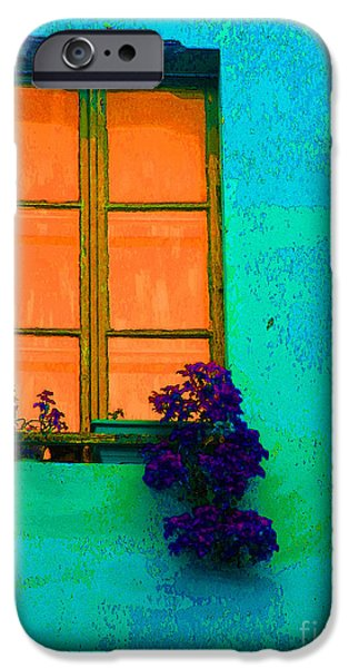 Ann Johndro-collins iPhone Cases - Orange Window With Flowers iPhone Case by Ann Johndro-Collins
