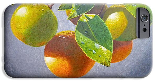 Pears iPhone Cases - Oranges iPhone Case by Carey Chen